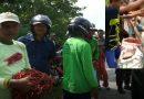 Bikin Sensasi Buang Cabai Afkir di Garut, Pedagang Cabai Ngaku Khilaf dan Minta Maaf
